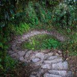 Viaja y conoce El Camino Inca