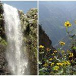 Viaja y conoce La cascada de Cóndor Pacana