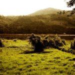 Lugares para visitar en Villa Rica
