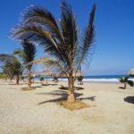 Viaja y conoce Playa Tambo de Mora