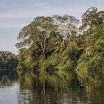 Conociendo la reserva de Bahuaja Sonene