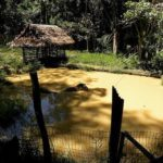 Iquitos: Cochas y playas de la Amazonía