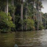 Vivir una aventura en Puerto Maldonado