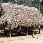 Turismo en Manantay – PUCALLPA, UCAYALI, PERU